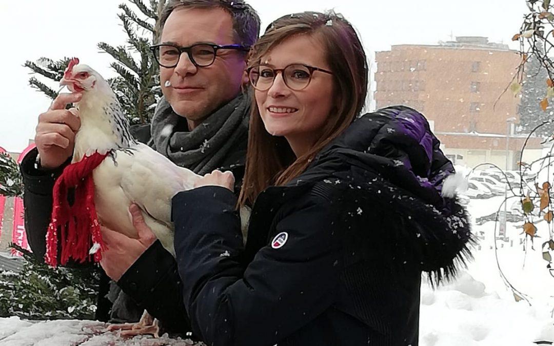 La poule Roxane au festival de l'Alpe d'Huez